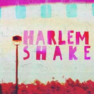 Harlem shake official Cuneo